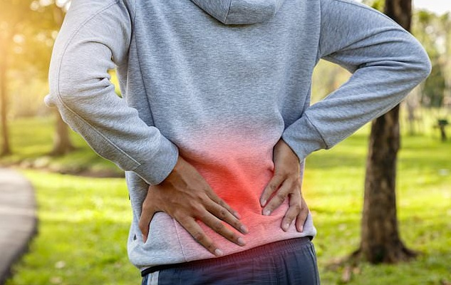 back pain coach reviews